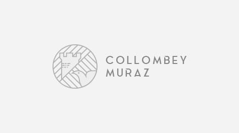 Fête au Village de Collombey-Muraz